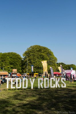 Teddy Rocks (1)